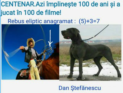 dan-stefanescu-rebus-facebook